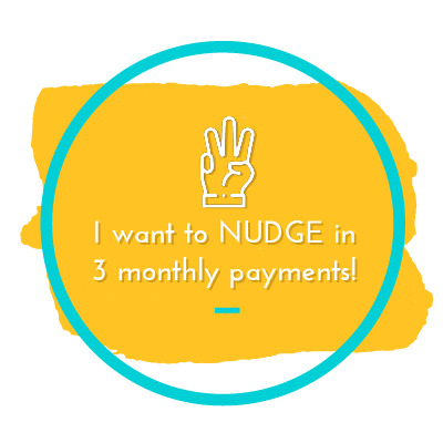 NUDGE- Full Payment Upfront